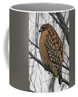Red-shouldered Hawk Coffee Mug