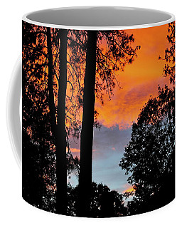 Coffee Mug featuring the photograph Red Sky At Night by Michele Myers