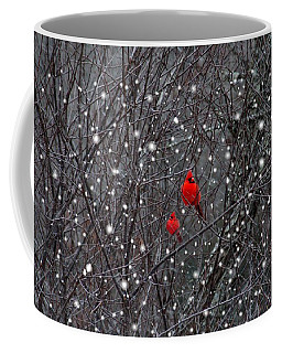 Red Snow Coffee Mug by Bill Stephens