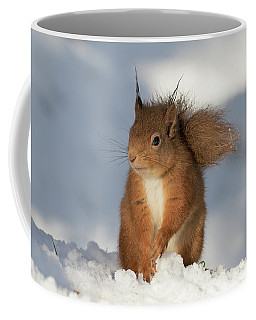 Red Squirrel In The Snow Coffee Mug