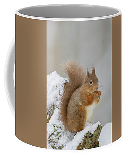 Red Squirrel In The Snow Side On Coffee Mug
