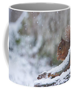 Red Squirrel On Snowy Stump Coffee Mug