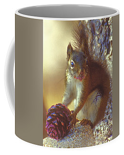Red Squirrel With Pine Cone Coffee Mug