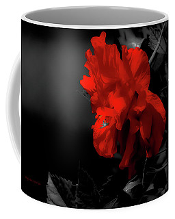 Coffee Mug featuring the photograph Red Surrounded By Black by DigiArt Diaries by Vicky B Fuller
