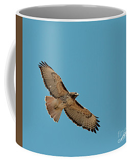 Red Tail Coffee Mug