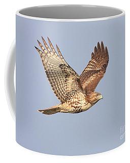 Red Tailed Hawk 20100101-1 Coffee Mug