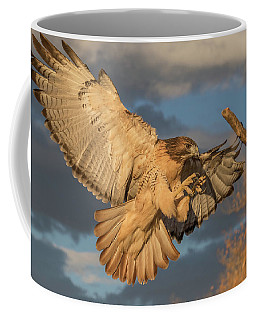 Red-tailed Hawk Focuses On The Landing Coffee Mug