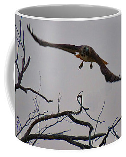 Red-tailed Hawk Launch 1 Coffee Mug