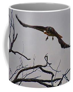 Red-tailed Hawk Launch 1 Coffee Mug