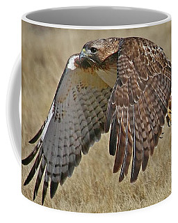 Red-tailed Hawk Mug Coffee Mug by Bob Zeller