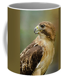 Coffee Mug featuring the photograph Red-tailed Hawk Portrait by Ann Bridges