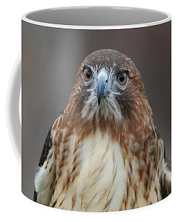 Coffee Mug featuring the photograph Red Tailed Hawk by Richard Bryce and Family