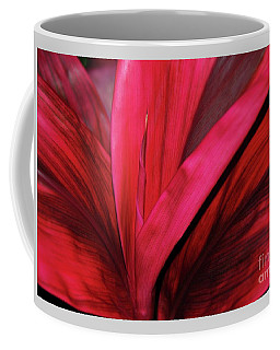 Coffee Mug featuring the photograph Red Ti Leaf Plant - Hawaii by D Davila