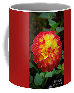 Red Tipped Petals Coffee Mug