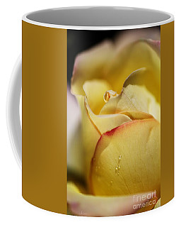 Red Tipped Yellow Rose Coffee Mug