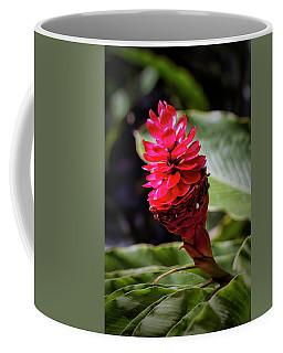 Red Torch Coffee Mug