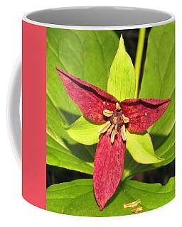 Red Trillium Coffee Mug