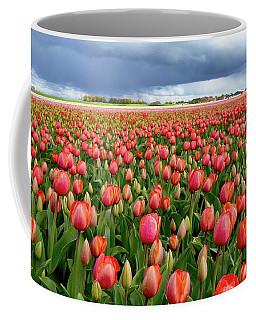 Red Tulip Field Coffee Mug