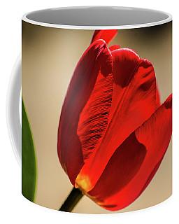 Red Tulip Profile Coffee Mug