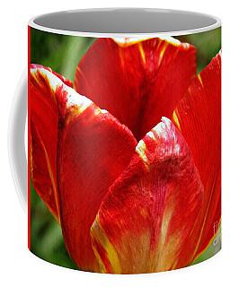 Red Tulip Coffee Mug by Sarah Loft