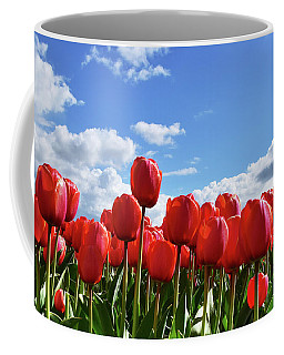 Red Tulips Front Row Coffee Mug by Mihaela Pater