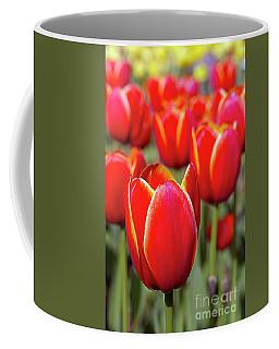 Red And Yellow Tulips I Coffee Mug