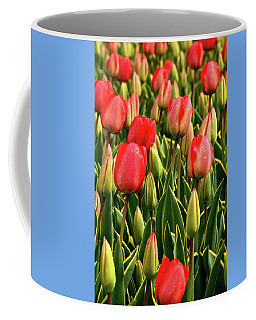 Red Tulips Coffee Mug by Mihaela Pater