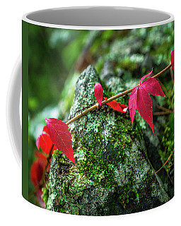 Coffee Mug featuring the photograph Red Vine by Bill Pevlor