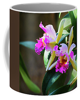 Red White Orchids Coffee Mug