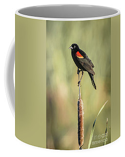 Red-wing On Cattail Coffee Mug
