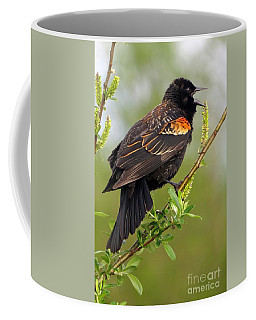 Red-wing Sound-off Coffee Mug