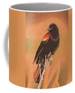 Red-winged Blackbird 3 Coffee Mug