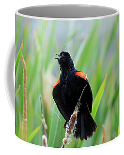 Red-winged Blackbird At Miner's Marsh, Nova Scotia Coffee Mug