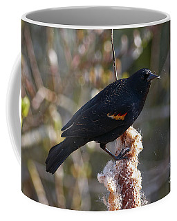 Coffee Mug featuring the photograph Red-winged Blackbird On Cattail Reed by Sharon Talson