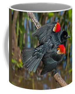 Red-winged Blackbird Coffee Mug by Suzanne Stout