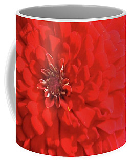 Coffee Mug featuring the photograph Red Zinnia  by Donna G Smith