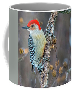 Coffee Mug featuring the photograph Redbellied Woodpecker by Skip Tribby