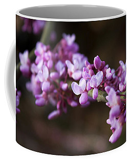 Coffee Mug featuring the photograph Redbuds In March by Jeff Severson