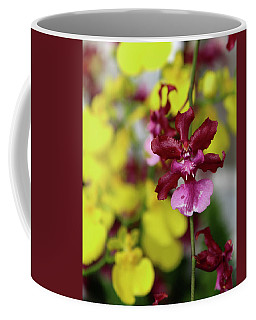 Coffee Mug featuring the photograph Maroon And Yellow Orchid by Melinda Blackman