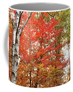 Red's Of Autumn Coffee Mug