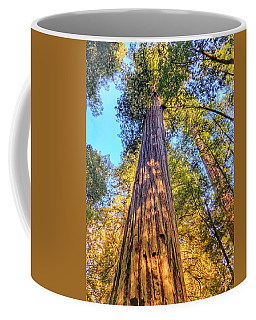 Redwood Coffee Mug