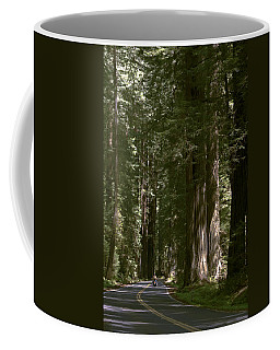 Redwood Highway Coffee Mug