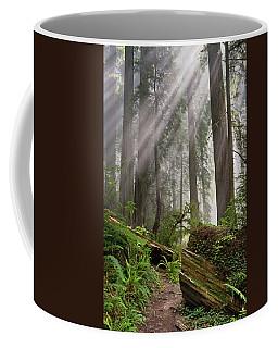 Redwood Light Coffee Mug