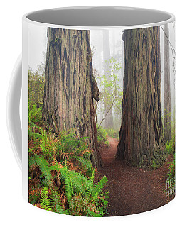 Redwood Trail Coffee Mug