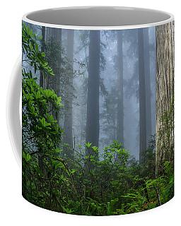 Redwoods In Blue Fog Coffee Mug