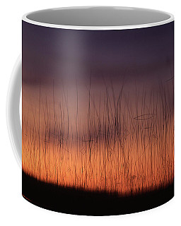 Reeds At Sunset Coffee Mug