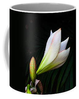 Refined Elegance Coffee Mug