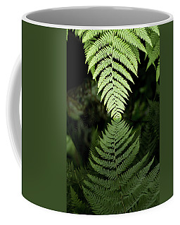 Reflected Ferns Coffee Mug