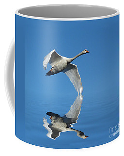 Reflected Swan Coffee Mug by Lynn Bolt