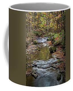 Coffee Mug featuring the photograph Reflecting Autumn by Dale Kincaid